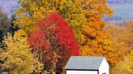 Fall colors are a blast in the
