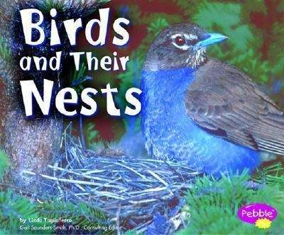 This photo book introduces birds and shows how