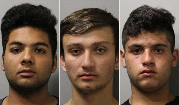 Police identified suspects in vandalism at the Garden