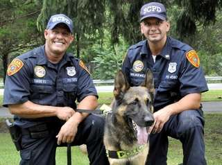 Chase, a German shepherd police dog, was called