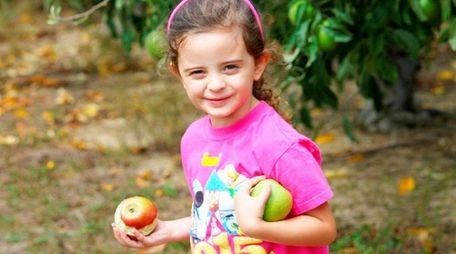 Emma Gagliano, 4, of Shirley, had fun apple