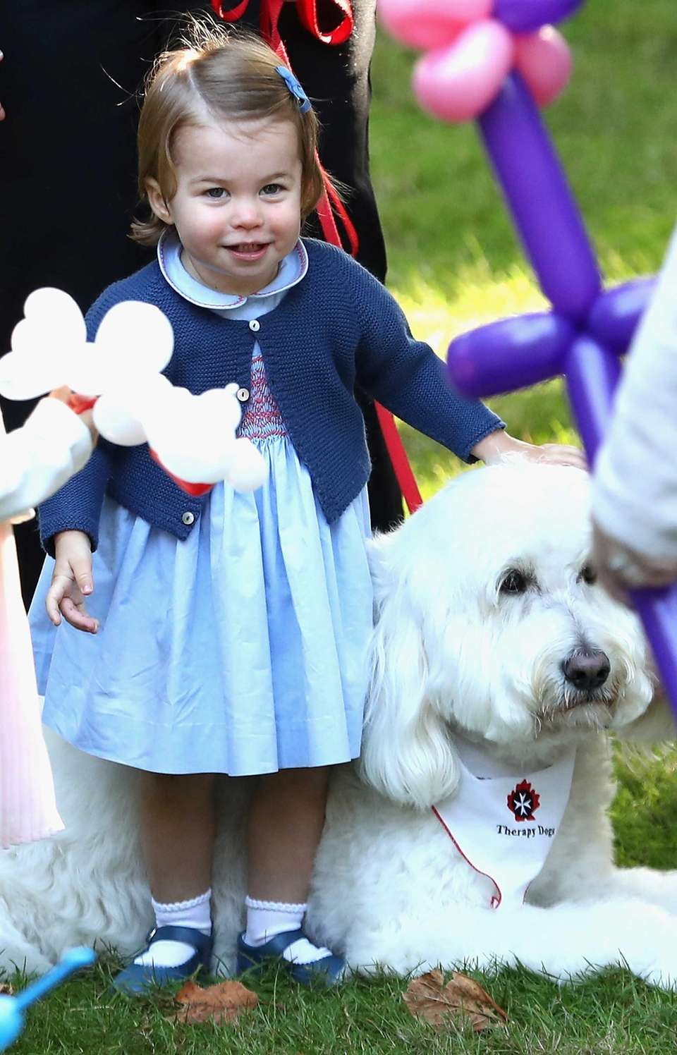 Princess Charlotte of Cambridge plays with a dog