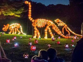 Halloween season kicks off with the glow of