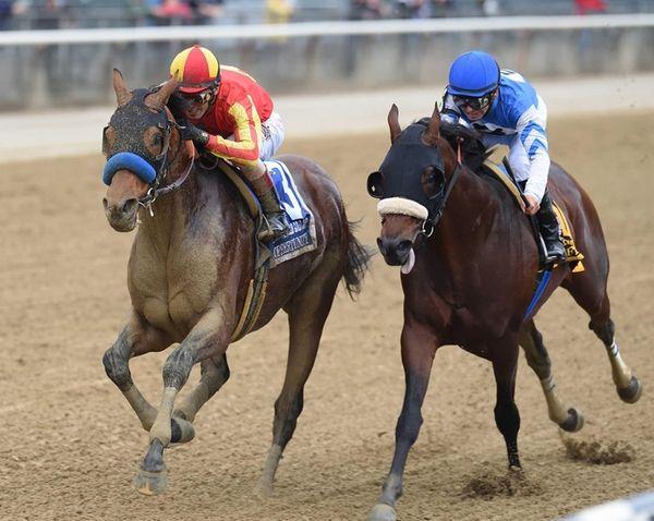 Hoppertunity, left, ridden by John R. Velazquez, wins