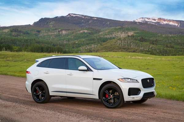 Local automobile dealers say SUVs like the 2017