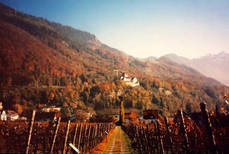 Royal castle and vineyard in Liechtenstein