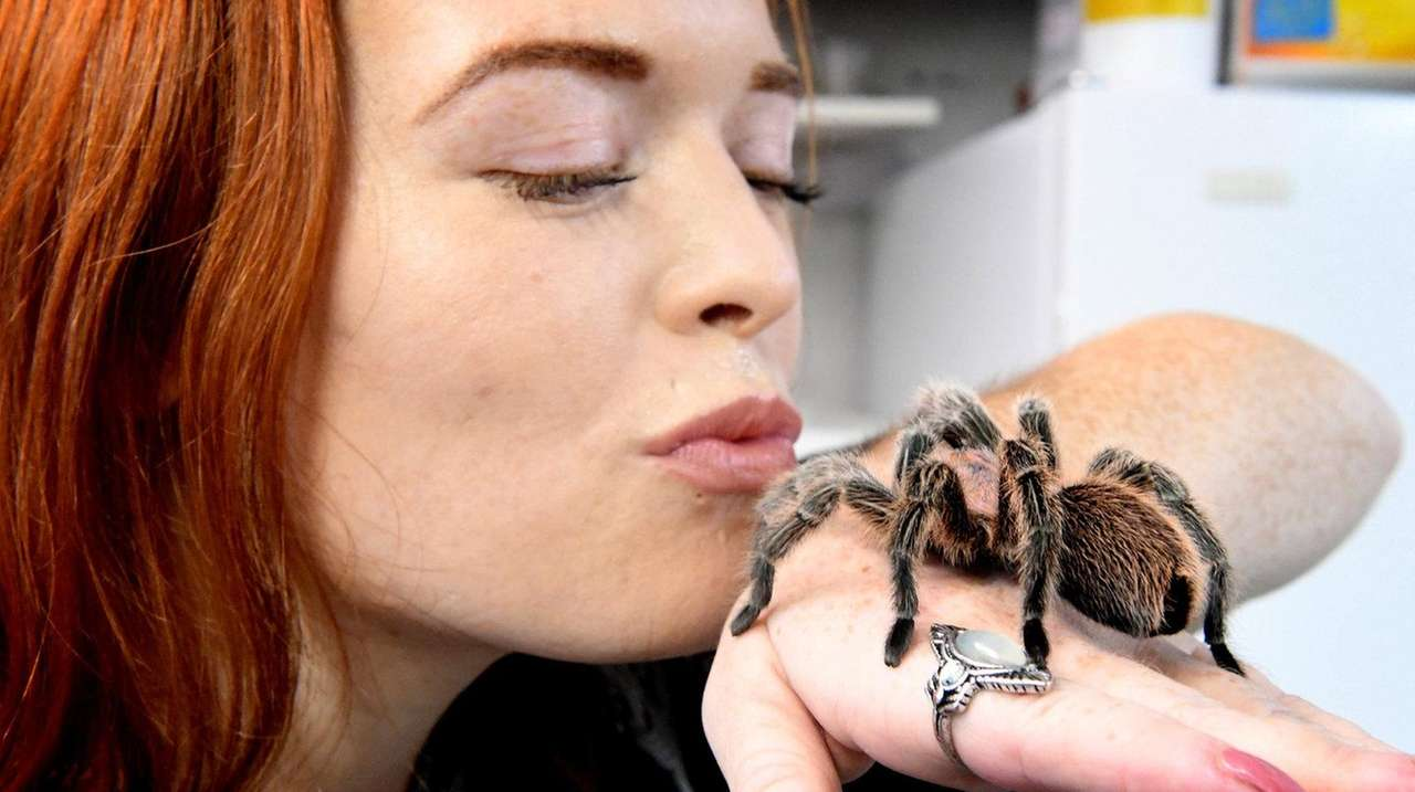 Spiders Are Creepy And Cool And They Can Make Good Pets Newsday