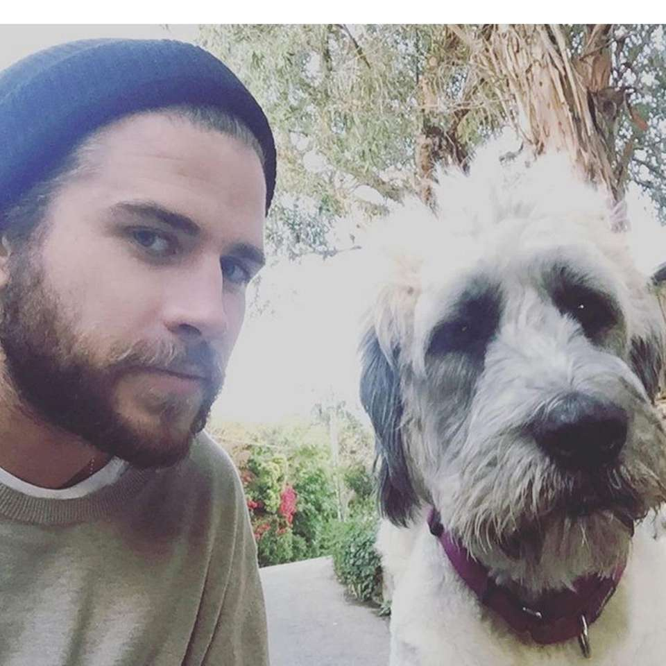 Liam Hemsworth takes a selfie with his adopted