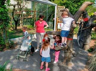 Kids can play like animals at Kronkosky's Tiny