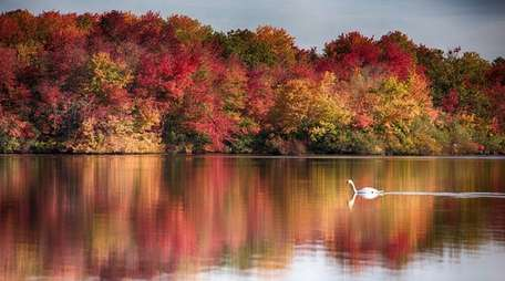 Fall foliage at Southards Pond in Babylon on
