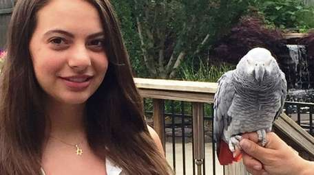 Kidsday reporter Lia McNally and her African gray