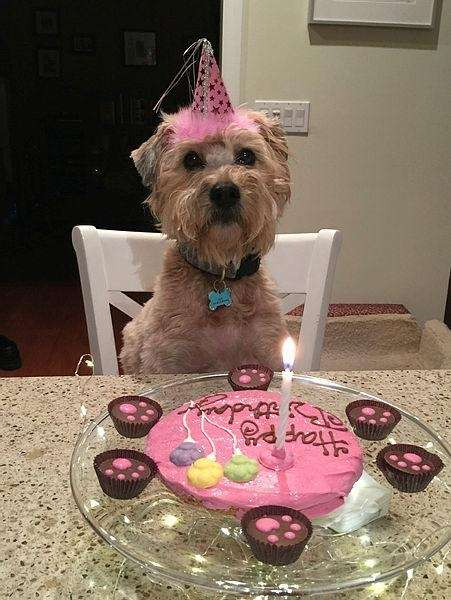 Zoe celebrating her birthday!