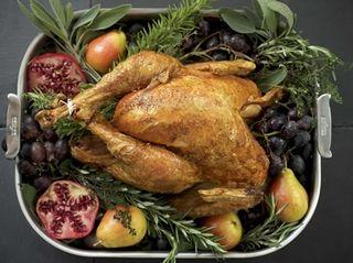 WHAT YOU'LL NEED 1 (10-to-12 pound) turkey Kosher