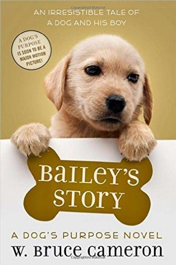 Dog S Purpose Novels Ellie Molly And