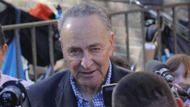 Senator Charles Schumer addresses the media after voting