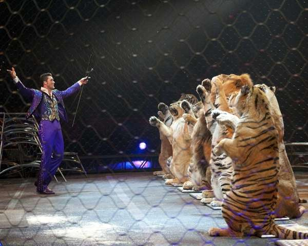 Alexander Lacey and his tigers were featured at