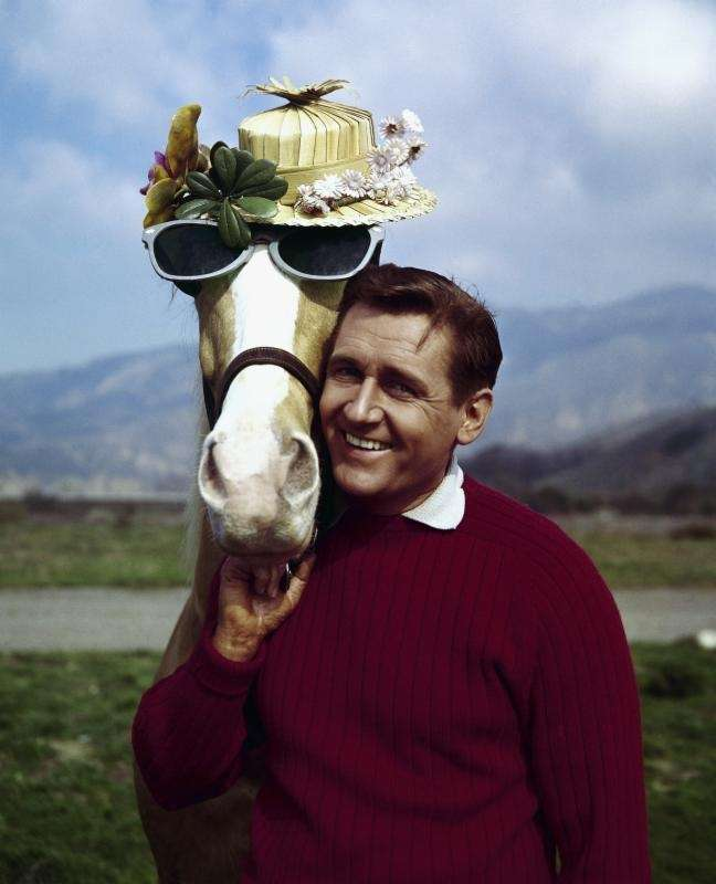 Mister Ed was the hilarious talking horse who