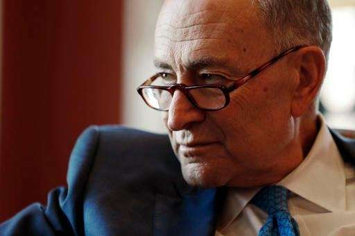 Senate Minority Leader-elect Chuck Schumer of N.Y. speaks