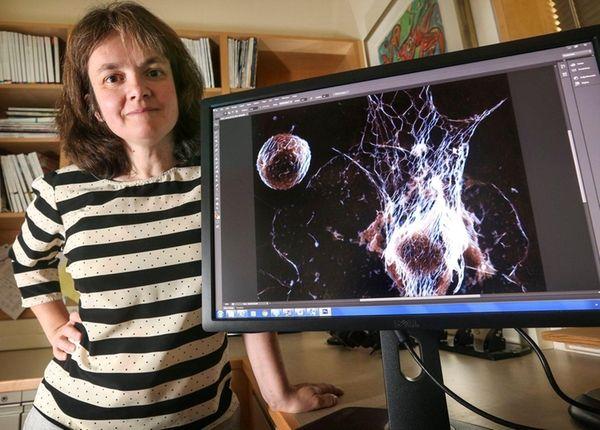 Cancer researcher Dr. Mikala Egeblad is shown at