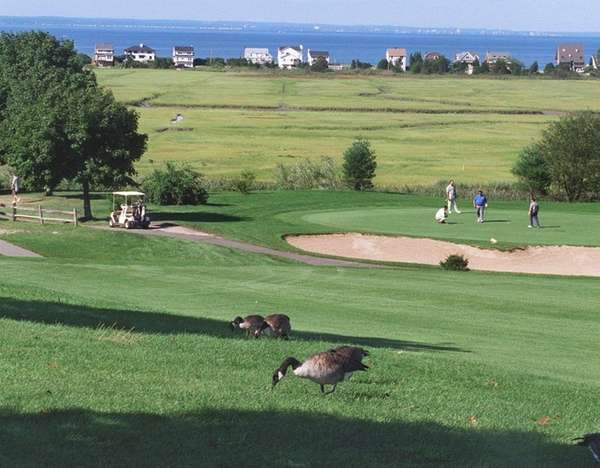 Crab Meadow Golf Course in Northport is one