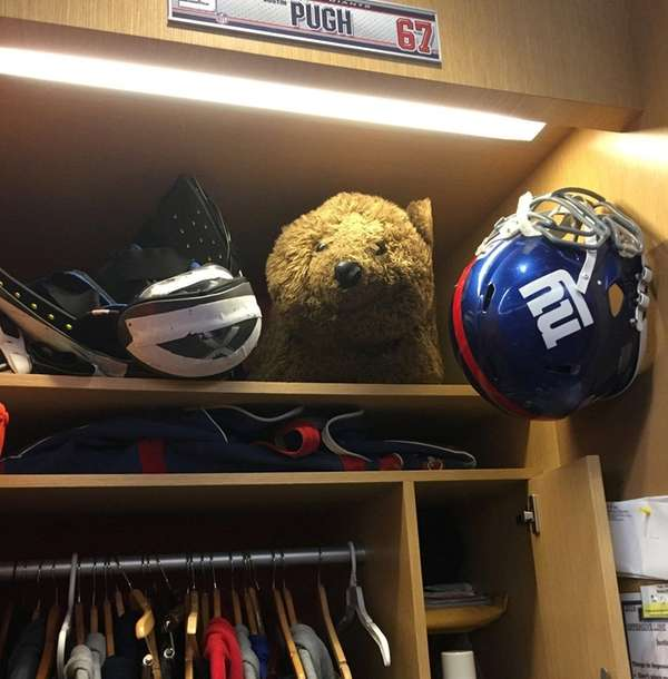 The bear in Justin Pugh's locker is the