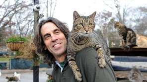 Chris Arsenault, with one of the 300 cats