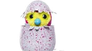 Hatchimals from Spin Master are 2016's must-have toy.