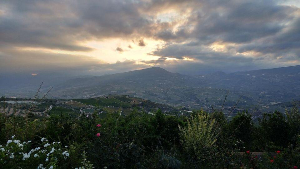 Nemea, Greece (view from Semeli Winery) - August