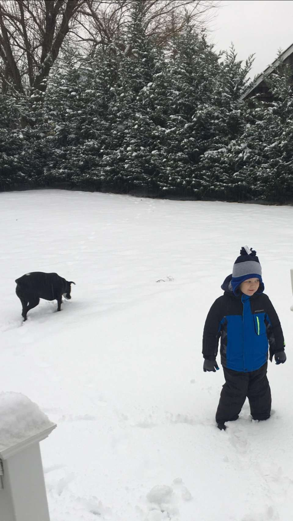 Declan throwing snowballs to Molly