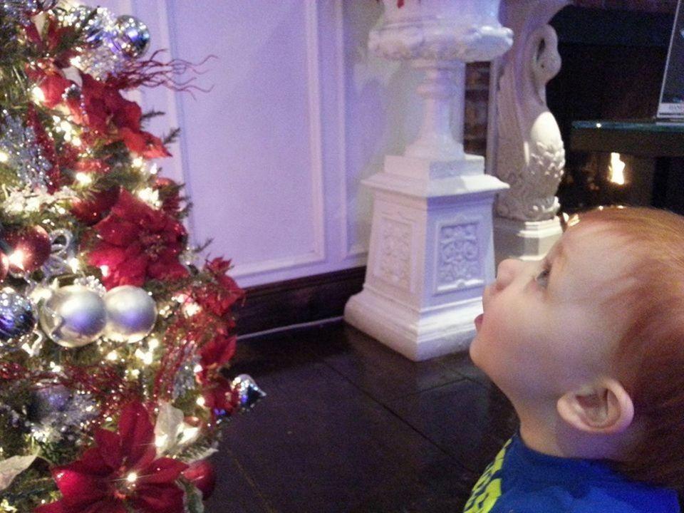 Childhood Wonder! Wyatt Paul Demery (16 months) gazing