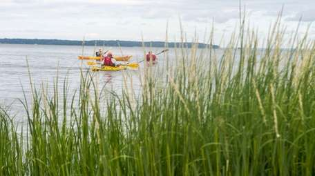 Members of a senior group of kayakers out