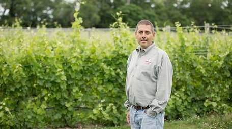 Jason Damianos, the owner of Jason's Vineyard in