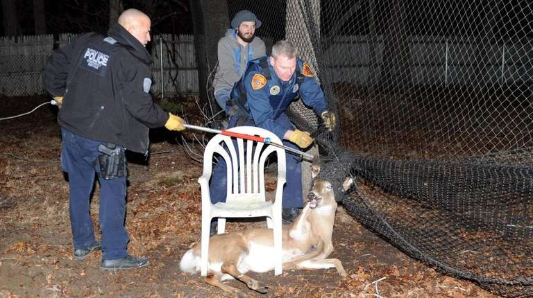 Suffolk County police officers came to the rescue