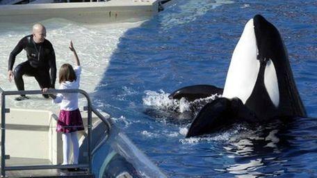 In this Nov. 26, 2006, file photo, SeaWorld