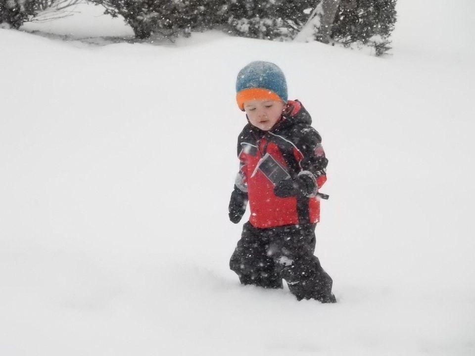 Freddie's first trek in snow