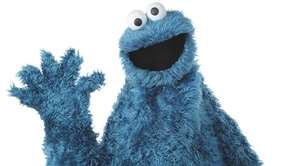 Cookie Monster, a character on
