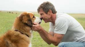 Dennis Quaid bonds with Buddy in