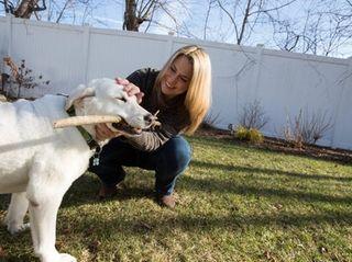 Melissa Bielawski, founder of Ollie's Angels Animal Rescue,