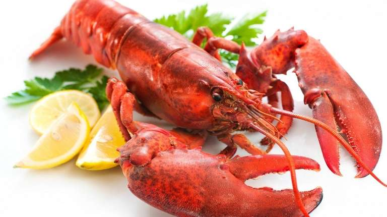 Lobster is on the menu for Donald Trump's