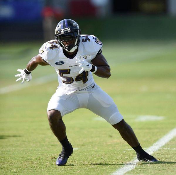 Baltimore Ravens linebacker Zachary Orr awaits a pass