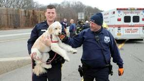 Suffolk County Officer Joseph Goss, left, carries Grace,