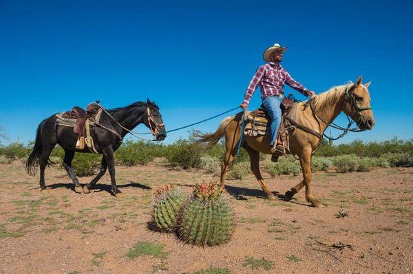 Visitors can enjoy desert rides, bonfires and a