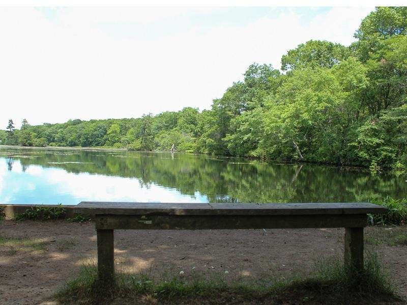 The Long Island Greenbelt Trail consists of more