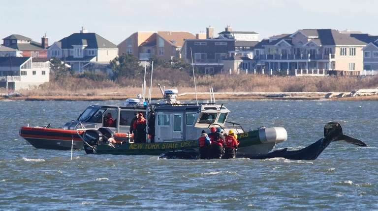 A meeting Tuesday will discuss the stranding of
