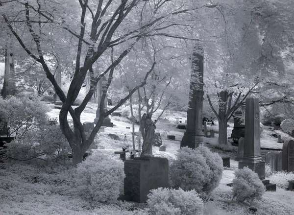 Gravestones at Oak Hill Cemetery in Washington, D.C.
