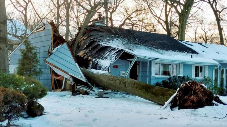 A large tree fell onto a house on