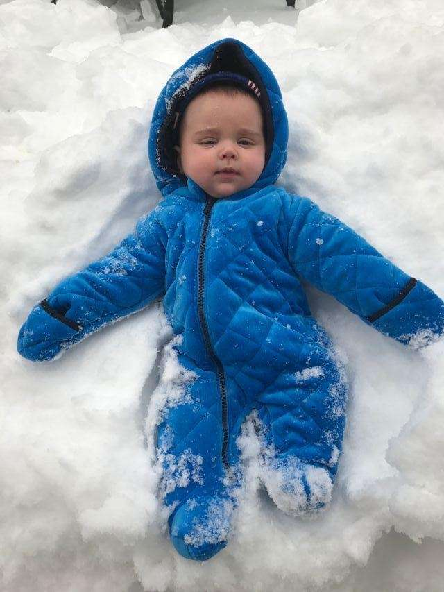 Baby Joey enjoying his first snow storm!