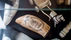 Toothpalooza will feature the Whaling Museum's tooth collection,