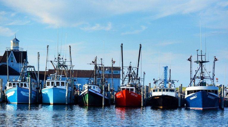 Some of the fishing fleet in Montauk Harbor