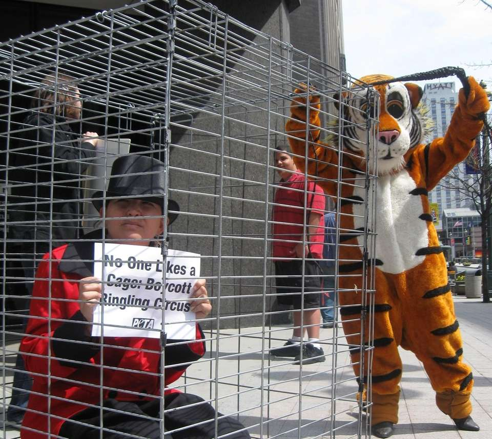 A circus protester sitting in a cage with